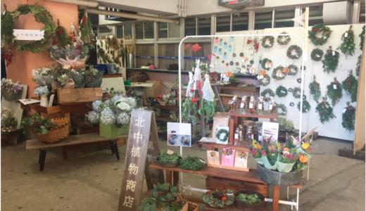 北中植物商店