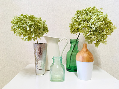 アナベルのドライフラワーを花瓶に入れて飾る