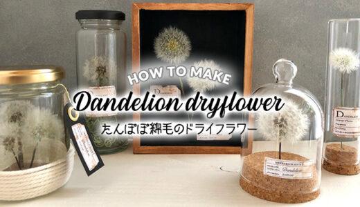 【100均DIY】たんぽぽの綿毛をドライフラワーに!インテリアになる植物標本雑貨の作り方