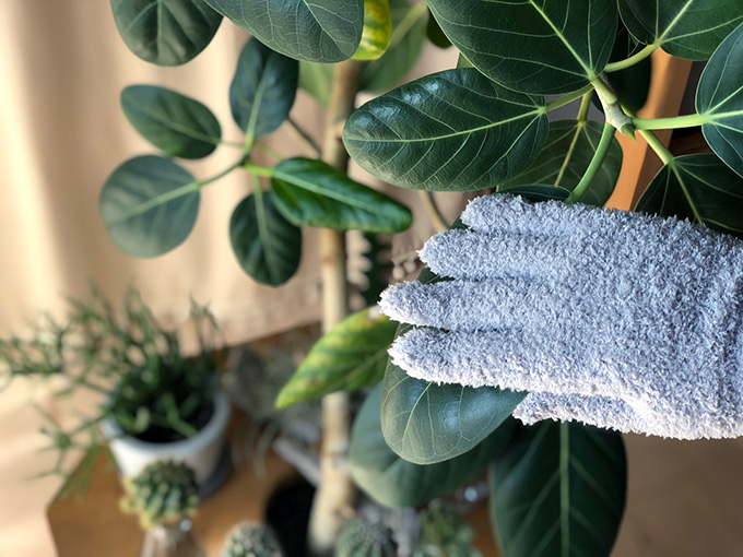 マイクロファイバー手袋で葉のほこり取り