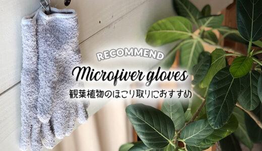 観葉植物のほこり取り掃除はマイクロファイバー手袋が最適!ツヤのある綺麗な葉っぱに蘇る!